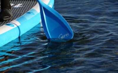 SUP Paddel Bluefin